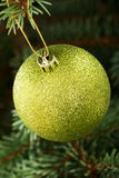 One gold christmas ball hanging on a tree. Stock Photos