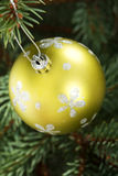 One gold christmas ball hanging on a tree. Royalty Free Stock Image