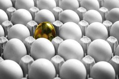 One gold egg lays among common white eggs stock photo
