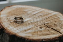 One gold wedding ring lying on the wooden stump cut. Close-up. Focus on the ring, the background is blurred stock photo