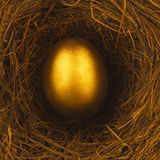 ONE GOLDEN EGG IN BIRDS NEST Royalty Free Stock Photos
