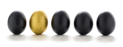 One golden egg among black eggs in a row isolated on white background Royalty Free Stock Images