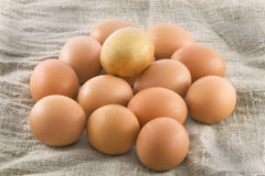 One golden egg with many ordinary eggs. One golden egg with many ordinary fresh rural eggs lying on a sacking (rough fabric Stock Image