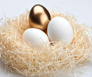 One golden egg and two white egg. In the nest Stock Image