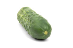 One green cucumber Stock Photo
