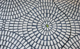 One green leaf in circular brick pattern Royalty Free Stock Photo