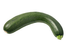 One green zucchini. Stock Images