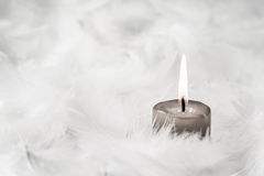 One grey burning candle on white background with feathers. Stock Photo