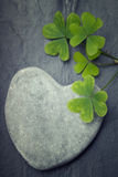 One grey heart shaped rock with  green shamrocks Royalty Free Stock Photos