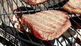 One grilled beef steaks cooking on barbecue grill stock video