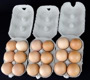 One and half dozen of light brown eggs in cardboard boxes Stock Image