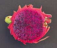 One half of Dragon fruit Royalty Free Stock Photography