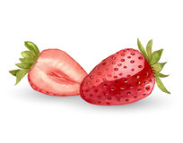 One and half watercolor strawberry Stock Photo