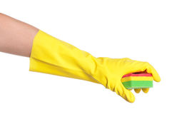 Hand in a glove Stock Image