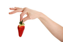 One hand of woman is holding one strawberry. Stock Image