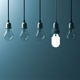 One hanging energy saving light bulb glowing different stand out from unlit incandescent bulbs Royalty Free Stock Photo