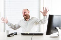 Cheerful Office Worker Royalty Free Stock Image