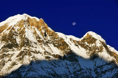 One of the highest peaks of the world Annapurna. Royalty Free Stock Image
