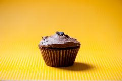 One homemade chocolate cupcake with brown chocolate ice cream stock images