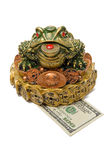 One hundred dollar under a three-pad frog Royalty Free Stock Photography