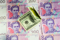 One hundred dollars banknotes on the background of ukrainian hry Stock Photo