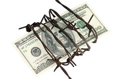 One hundred dollars and barbed wire. One hundred dollar wrapped in barbed wire Royalty Free Stock Images