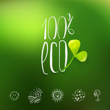 One hundred percent eco logo Royalty Free Stock Image