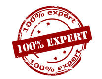 One hundred percent expert Royalty Free Stock Photography