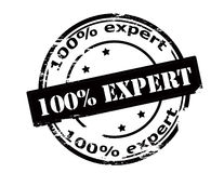 One hundred percent expert Stock Image