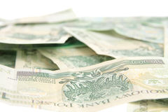One hundred polish zloty Royalty Free Stock Images