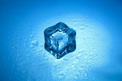One icw cube Stock Image