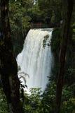 One of Iguazu waterfalls seen between trees Stock Photography