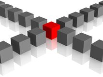 One individuality red cube on the white backround. Royalty Free Stock Photography