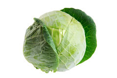 One isolated Cabbage green Stock Photos