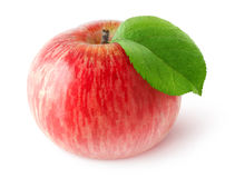 One isolated red apple Stock Images