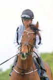 One jockey on a race horse Stock Photo