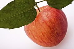One Juicy red apple with leaves Royalty Free Stock Photo