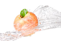 One juicy red apple in water splash isolated Royalty Free Stock Photography