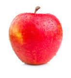 One Juicy Wet Red Apple  on White Royalty Free Stock Images