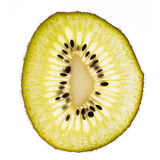 One kiwi slice Royalty Free Stock Photos