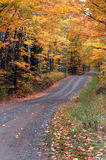 One Lane Autumn Royalty Free Stock Photos