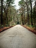 One Lane Road to Nowhere TX. Conroe TX USA - Feb 7 2018  -  One Lane Road to Nowhere TX leading to an encampment Royalty Free Stock Photography