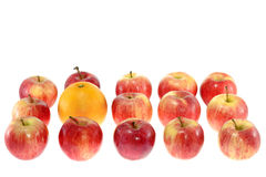 One large orange and red apples Stock Photos