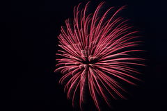 One Large Red Firework Explosion Royalty Free Stock Photo