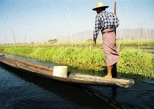One leg boat rower - visible grain. Rower on Inle lake in Myanmar royalty free stock photography