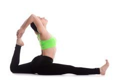 One-legged yoga van de koningsduif stelt Royalty-vrije Stock Fotografie