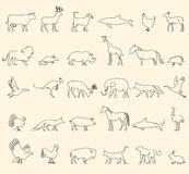 One line animals set, logos. vector stock illustration. Turkey and cow, pig and eagle, giraffe and horse, dog and cat Stock Photos