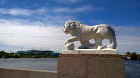 One of the lion sculptures on Elagin island with the stadium Saint Petersburg in the background Stock Images