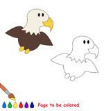 One little eagle. Page to be color Stock Photos