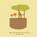 One little giraffe Royalty Free Stock Photos